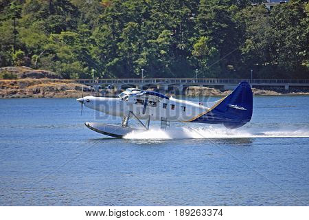Seaplane taxiing in Victoria harbor, Vancouver Island