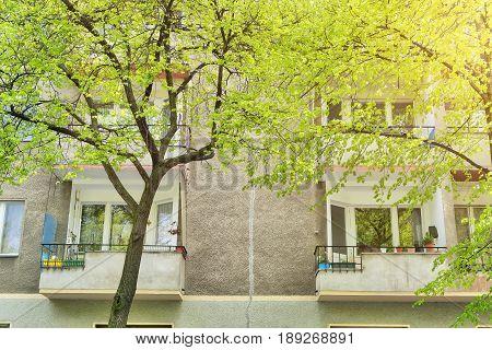 Old House And Trees In Berlin Kreuzberg