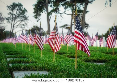 Memorial Day at a southern California cemetery.