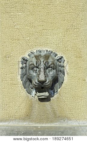 Lion Steel Statue