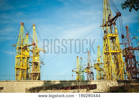 Many Construction Cranes On Blue Sky - Storage And Service Center Of The Organization For The Rental