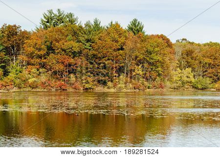 Autumn foliage along leach pond at Borderland State Park