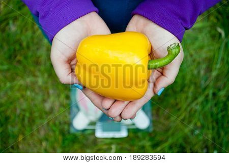 Fat woman wants to lose weight diet top view in blue suit stands on transparent glass scales in pink sneakers on green grass holds a large yellow sweet Bulgarian pepper with short blue nails on a blurred background