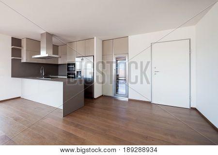 Modern kitchen in new apartment. Nobody inside