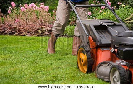 Gardener mowing the lawn.
