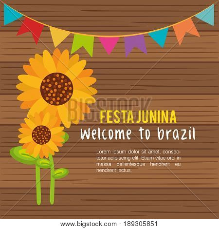 Festa junina infographic with sunflowers and banner over wood background. Vector illustration.