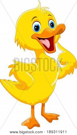Vector illustration of cute duck cartoon isolated on white background