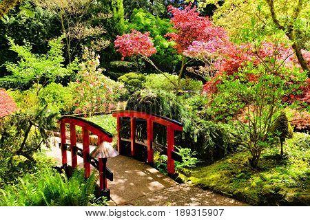 Bridge Through Beautiful Japanese Gardens, Butchart Gardens, Victoria, Bc, Canada