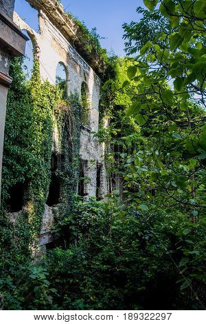 Overgrown ruins of abandoned mansion, Abkhazia. Green post-apocalyptic concept