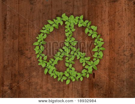 Green plant peace symbol on wooden background