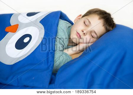The boy rested comfortably inside the child's sleeping bag and slept sweetly laying his hand under his head