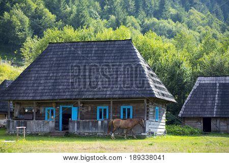 A horse grazes near the wooden national Ukrainian house in the Carpathian mountains