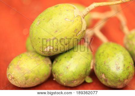 Otatheite apple, Golden apple, Jew plum fruit and herb