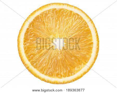 Bright Juicy Orange Slice
