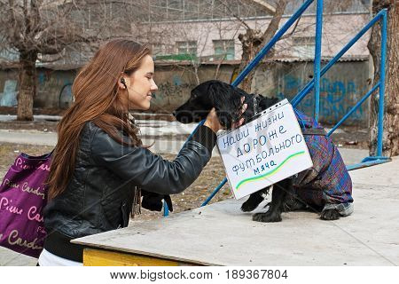 Volgograd Russia - March 31 2012: Young woman stroking dog with table (translated from the Russian