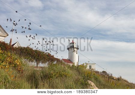 Partial view of the Eastern Point Lighthouse in Glouchester MA.