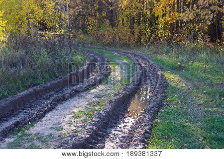 Messy Rural Dirt Road