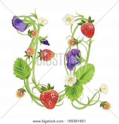Letter U Strawberry font. Red Berry lettering alphabet. Vector realistic illustration ABC. Design for grocery, farmers market, tea, natural cosmetics, summer garden design element.