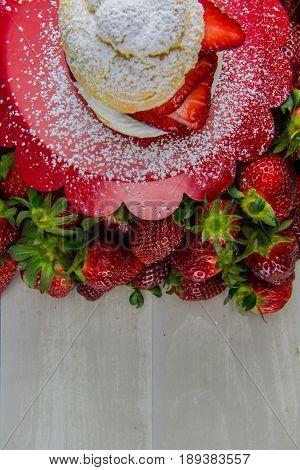 Powdered Sugar Covers Shortcake And Tray
