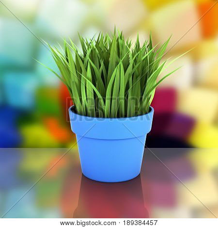 Flowerpot With Green Grass On Abstract Bakground With Reflection 3D