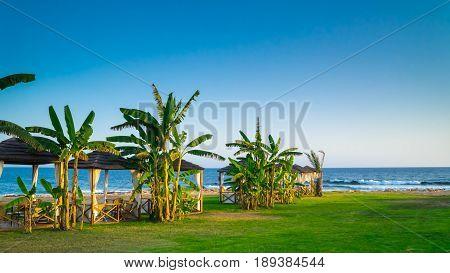 Romantic beach with pergolas, palms and blue sky