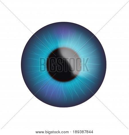 illustration of colrful realistic eye blue color on white background