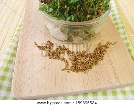 Alfalfa seeds and sprouts in glass on wooden board