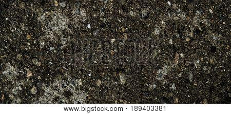 Soil, soil background, soil texture. Earth, earth background, ground texture. Natural background. Gray background. Grunge background.
