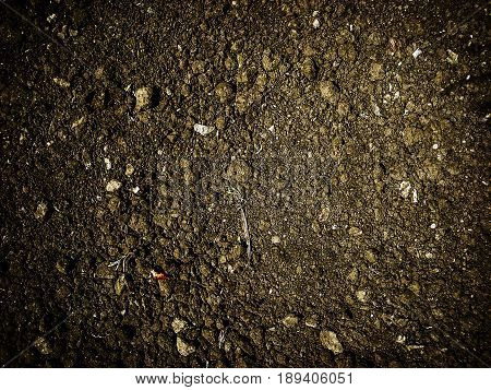 Soil, texture of the soil, abstract nature background, ground texture