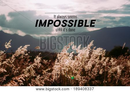 Inspirational or motivation quote on Cogon grass field background show calm emotion with many goods word describe the great feeling.