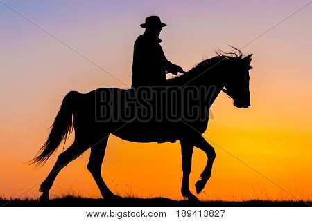 Silhouette of horseback riding rider in the sunset