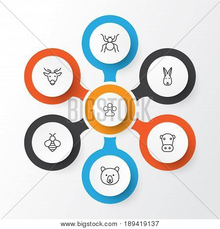 Animal Icons Set. Collection Of Bunny, Kine, Moose And Other Elements. Also Includes Symbols Such As Bunny, Kine, Reindeer.