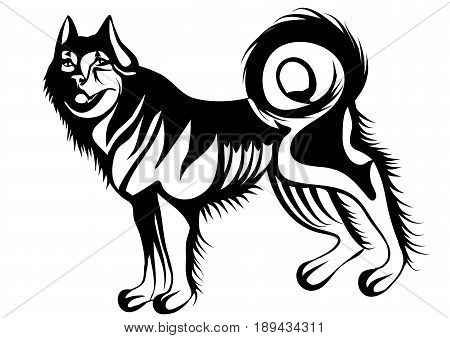 husky sialhouette isolated on a white background