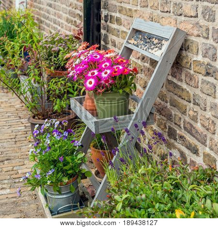 Square image of varied pots and plants in front of the facade of the historic beguinage in the Dutch of Breda North Brabant. It's a warm day in the spring season.