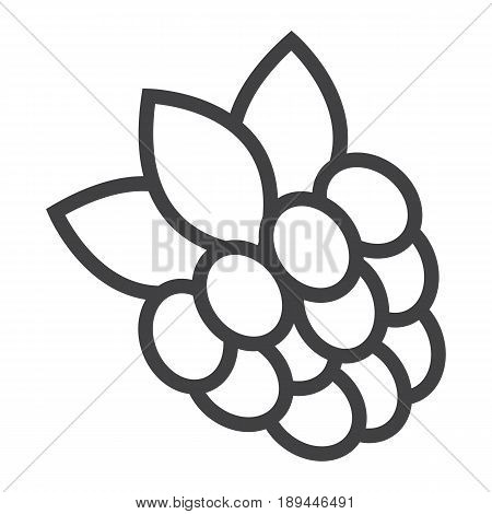 Blackberry line icon, fruit and diet, vector graphics, a linear pattern on a white background, eps 10.