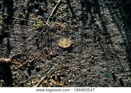 Coin of Ukrainian currency Hryvna on the soil in the summer sunset light.
