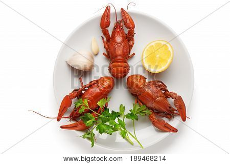Boiled Crayfishes On Plate With Garlic, Lemon And Parsley