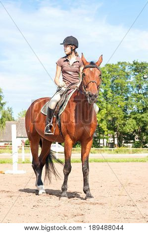 Teenage girl equestrian riding thoroughbred horseback. Vibrant summertime outdoors image.