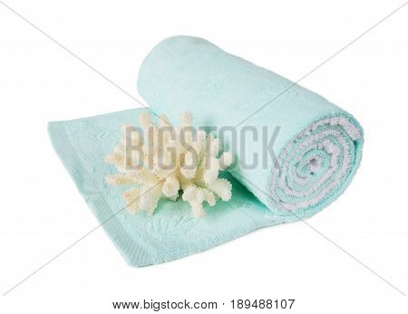 Blue terry towel rolled up on a roll and a beautiful large white coral isolated on a white background