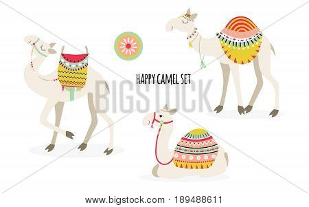 Set of three cute smiling camel with ethnic saddles. Isolated on white background. Vector illustration.
