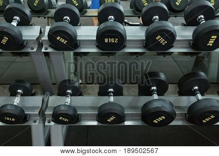 dumbbell set in fitness gym workout weights traning sport club center