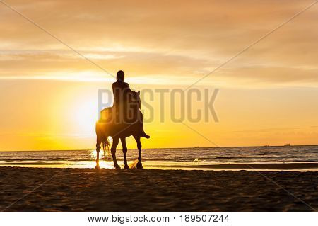 Horseriding at the beach on sunset background. Baltic sea. Vibrant multicolored summertime outdoors horizontal image.
