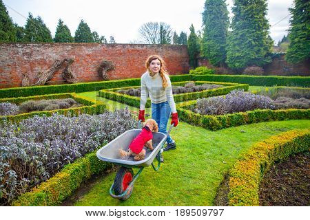 A woman with curly hair smiling carries her poodle in a wheelbarrow through a well-kept English garden