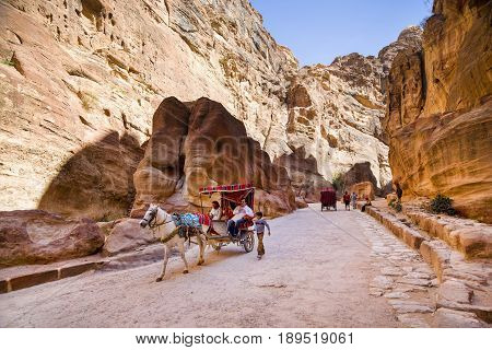 Petra Jordan - 9 March 2017: The horse carries tourists through the Siq canyon Petra Jordan