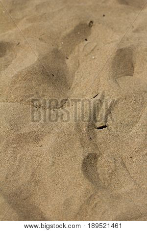 closeup of sand pattern of a beach in the summer .