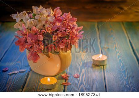 Sakura In Vase