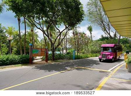 Singapore, Singapore - February 13, 2017: Sentosa express bus move alongside the road near Palawan Beach on the Sentosa Island in Singapore.