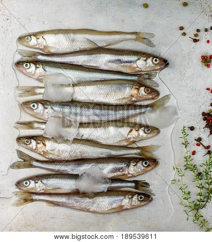 Fresh Smelt For Frying With Spices. Small Fish. Selective Focus
