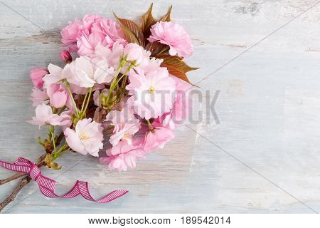 Romantic spring background. Pink flowers on blue wooden background from above.