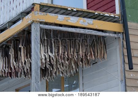 Stockfish Norway